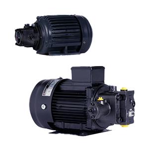 Pump Motor Assembly
